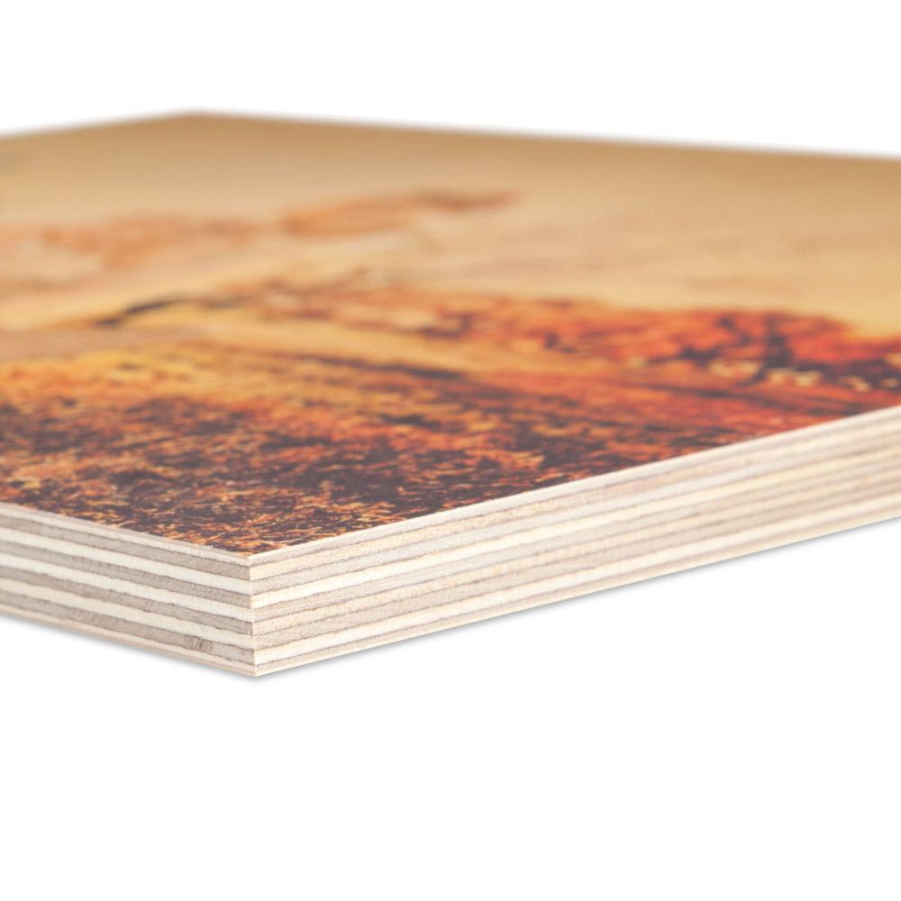 Stampa su pannelli forex online, prezzi convenienti e consegna gratuita